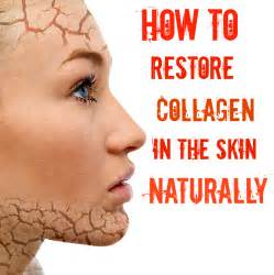hrt does it restore collagen picture 5
