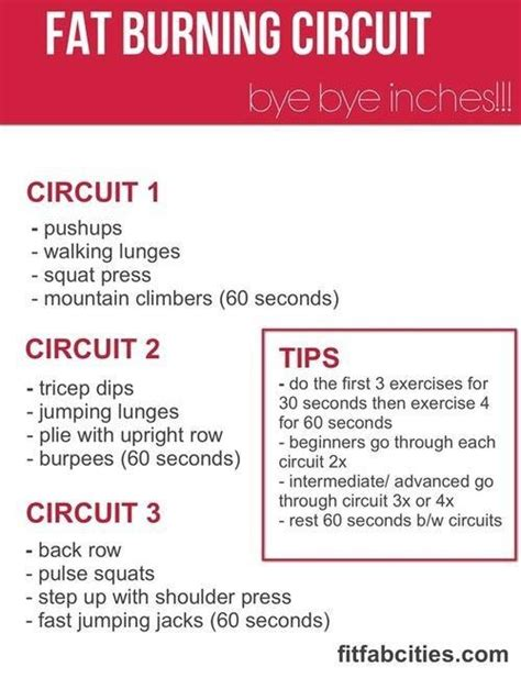 fat burning circuit training picture 1