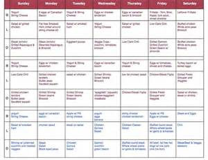 adkins diet menu picture 13