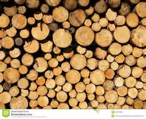 piles of wood picture 6