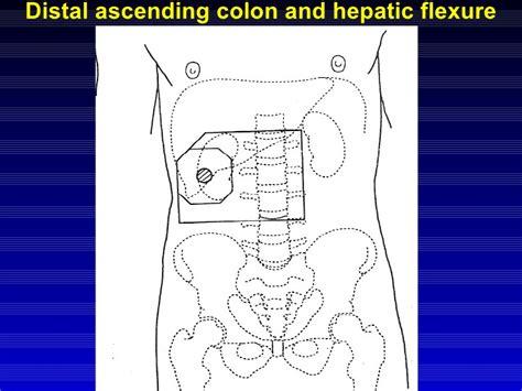 warts in sigmoid colon picture 14