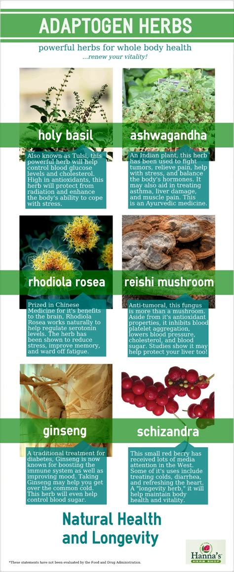 the best herbal adaptogens picture 1