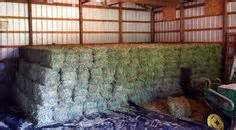3 string alfalfa bales for wholesale in texas picture 11