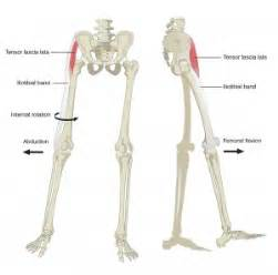 chronic hip muscle pain picture 6