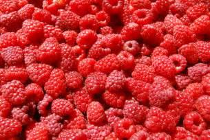 raspberry picture 13