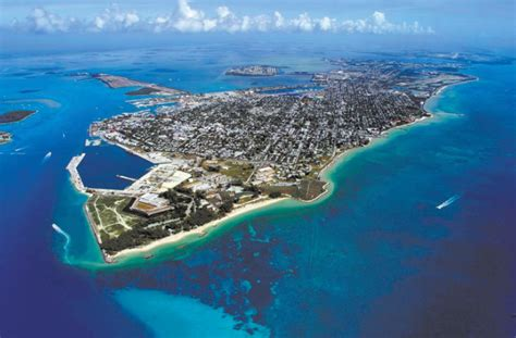 where to buy weed in key west picture 7