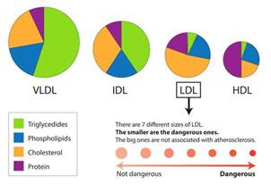 Cholesterol levels in different picture 6
