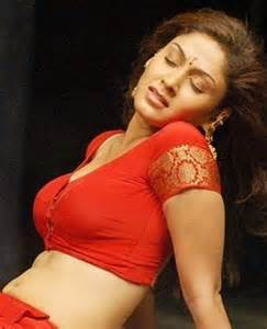 malayali chechi hot picture 10