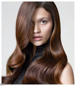 cholalate brown hair color picture 17