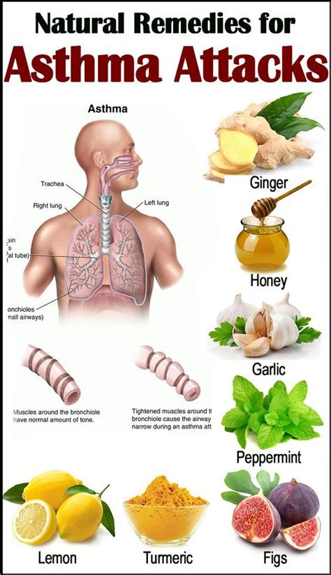 home or herbal remedies for allergy cough picture 6