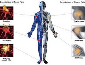joint and nerve pain picture 5