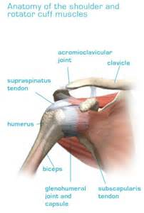 joint impingement syndrome shoulder diagnosis treatment picture 5