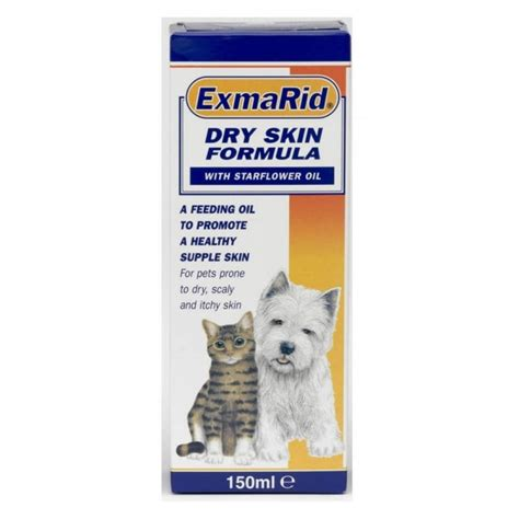 cat health dry skin picture 1
