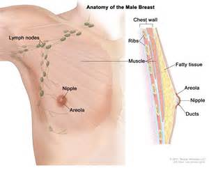 total feminization of mens have breast and picture 6