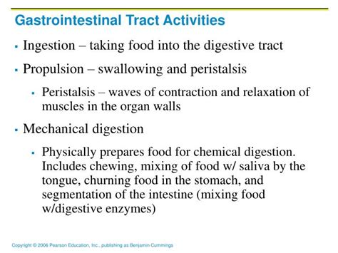 gastrointestinal tract activities picture 6