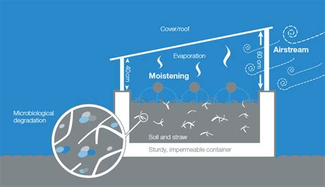 role of water in microbial growth picture 12