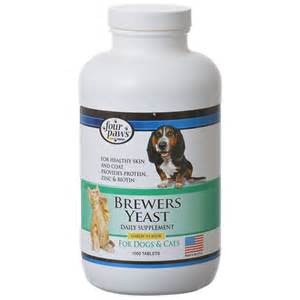 brewers yeast tablets plus garlic picture 10