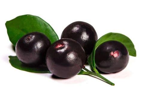 acai berries pregnant picture 1