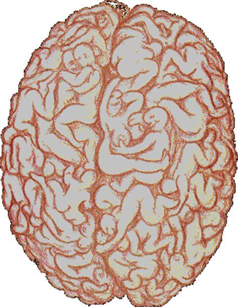 increase in libido in brain tumor picture 3