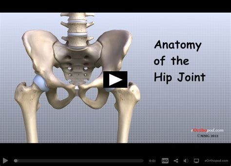 hip pain relief picture 11