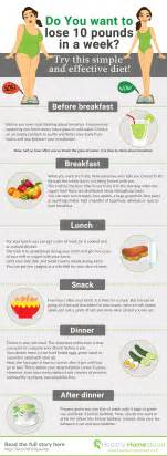 diet food plans to lose 10 pounds in picture 2