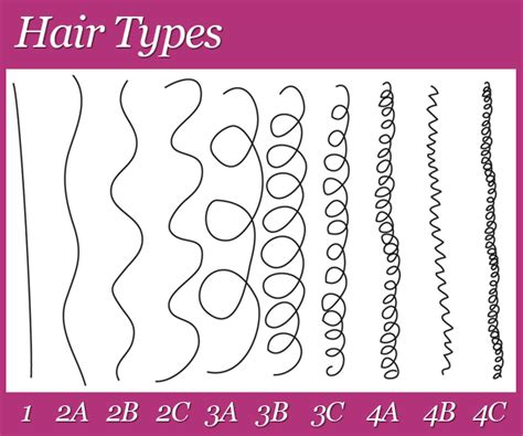 curly hair types picture 11