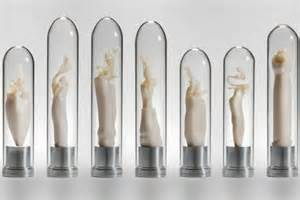 different shapes of penis pictures picture 9