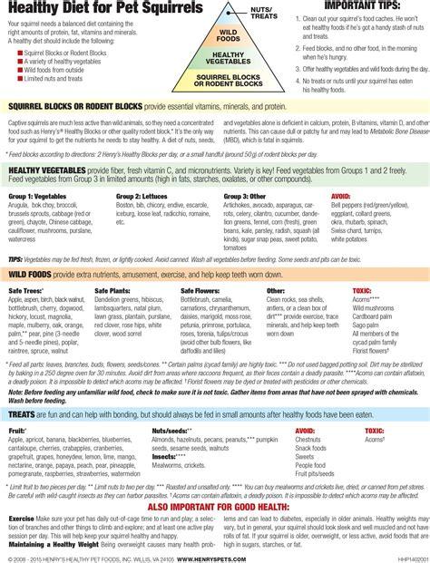 pet diet information picture 18