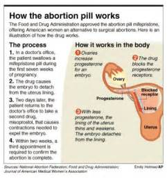 herbal abortion for 8 weeks pregnancy picture 7
