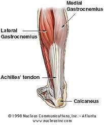 calf muscle strain with popping noise picture 6
