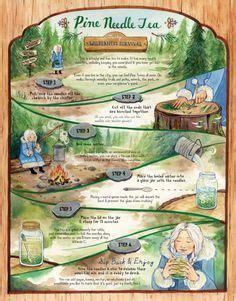 miscarriage tea recipe picture 15