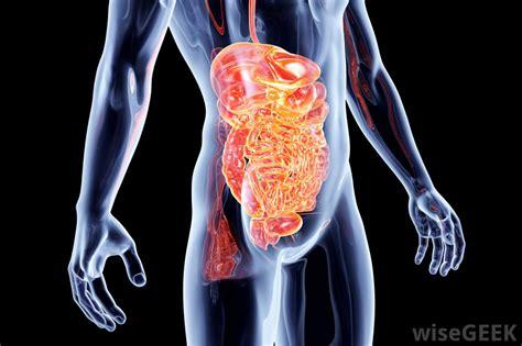 intestinal pseudo obstruction symptoms picture 6