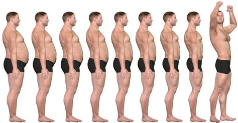testosterone free results picture 1