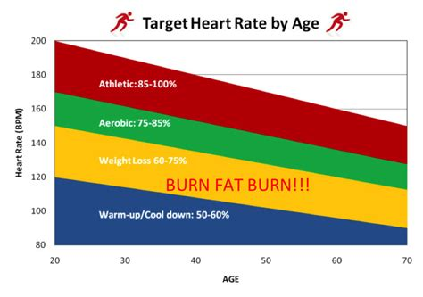 fat burning zone picture 9