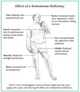 elevated testosterone side effects picture 18