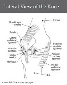 proprioceptive functions of soccer players' knee joints picture 10
