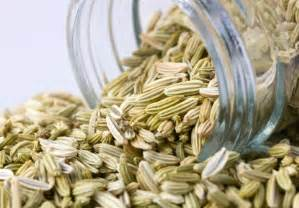 fennel + digestion picture 9
