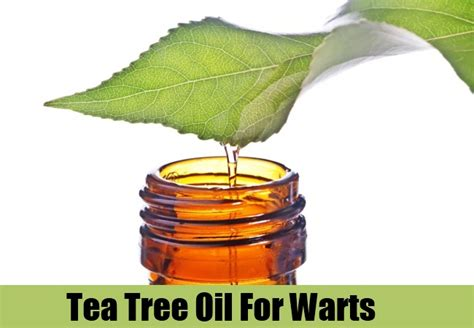 tea tree oil genital warts burning smell picture 7