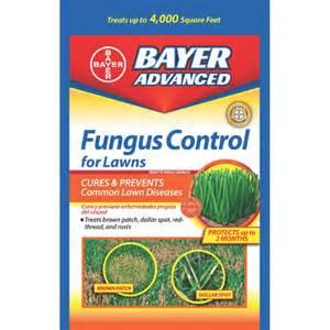 lawn fungus control picture 11