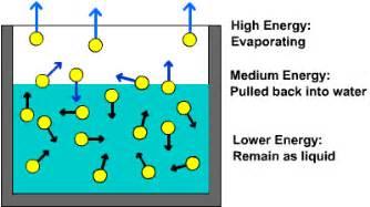 skin evaporation happen quicker in people picture 2