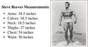 dynamic muscle building steve reeves picture 17
