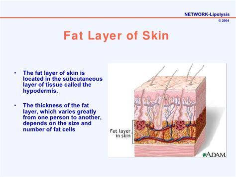 european skin care salon picture 15