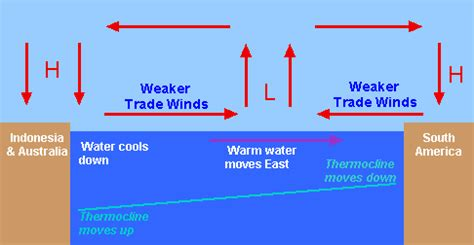 west coast thermo sea high potency picture 14