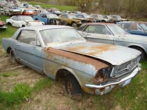 backyard muscle cars picture 6