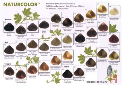 where to buy naturcolor hair dye picture 1