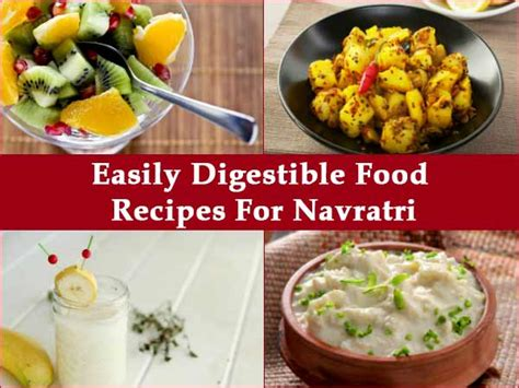canine highly digestible diet homemade picture 14