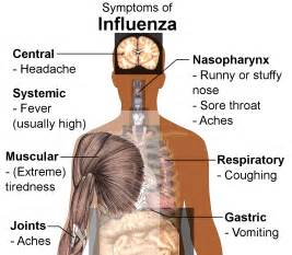 are fatigue and bacterial infections related picture 18