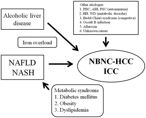 alcoholic liver disease with representation picture 2