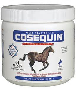 equine joint supplements picture 2