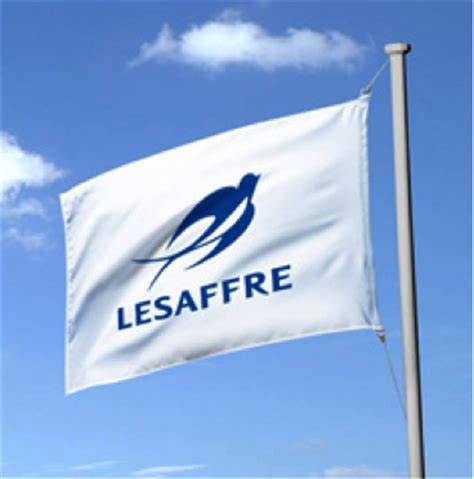 lesaffre yeast corporation picture 11